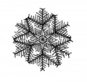 snowflake shards black and white mandala